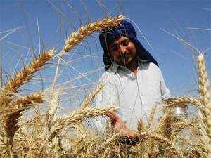 With the prevailing high temperature threatening to affect the wheat crop, the government today said the next 2-3 days will be crucial.