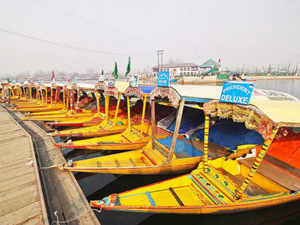 Boutique tourist accommodations such as the houseboats on Dal Lake and old havelis in Rajasthan, which have been struggling to survive.