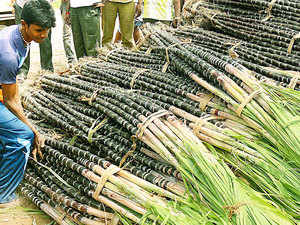 Private and state-owned sugar mills numbering 43 have not been able to adhere to the price bar the state government wants them to reach, partly due to highly-leveraged balance sheets drying up liquidity and sugar prices being in a free fall.