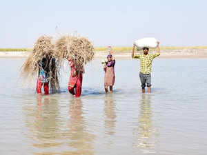 India today signed a $250 million loan agreement with the World Bank for Bihar Kosi Basin Development project, aimed at enhancing resilience to floods and increase agriculture productivity.