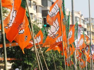 BJP's Kapil Aggarwal today filed nomination papers here for Muzaffarnagar assembly by-election slated for February 13.