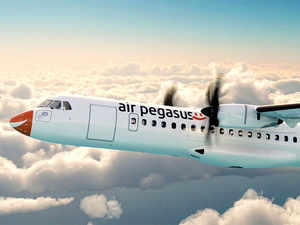 The airline will also submit its network expansion plans to the DGCA once the permission for leasing of the two planes is in place, Air Pegasus said.