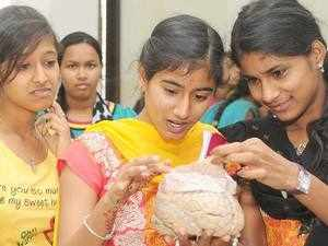 College students and schools students feel the touch of Human Brain at workshop .