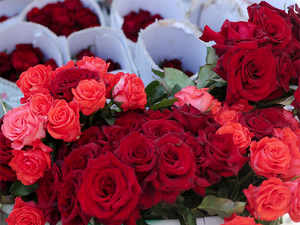 India may export 19 million stems of roses in February compared to 17 million stems a year ago, said Praveen Sharma, president of Indian Society of Floriculture Professionals.