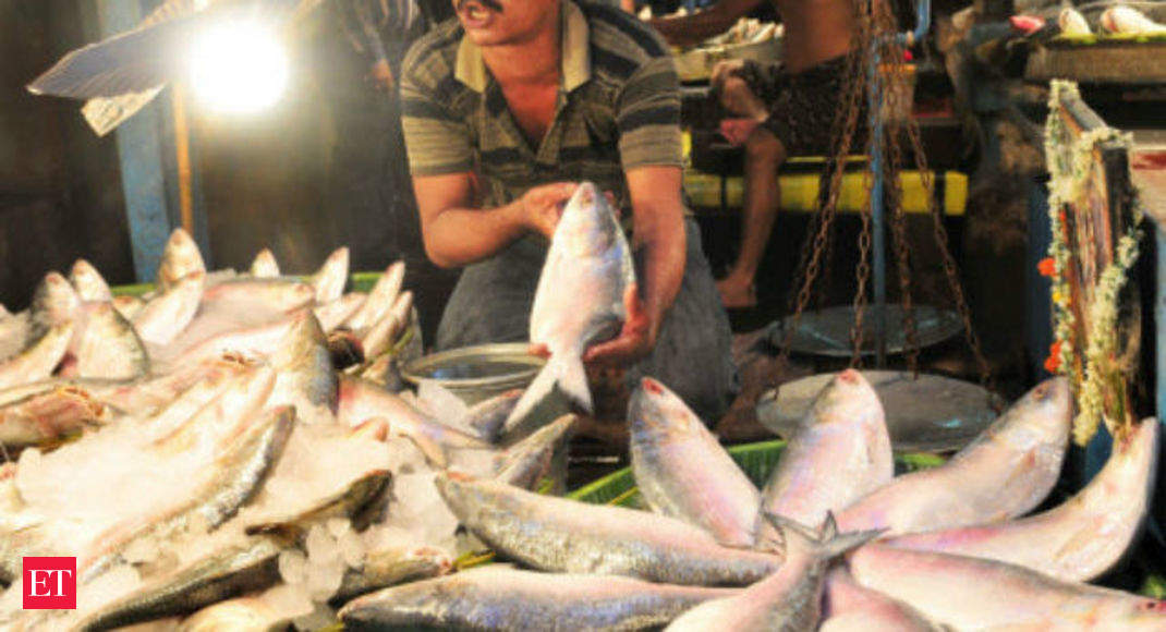 Hilsa preservation and research centre set up in Sultanpur