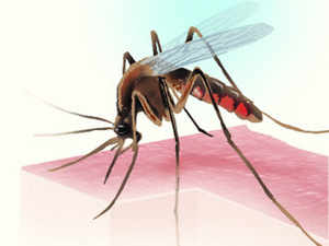 The public-private partnership agreement is likely to be signed next week and will add funds to the National Framework for Malaria Elimination (NFME).