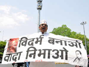 While the rest of the state is celebrating Maharashtra Diwas (Maharashtra Day), the formation of the state on May 1, many parts of Vidarbha where the sentiment for a separate state is getting stronger saw people raising their own flag and observing a black day .