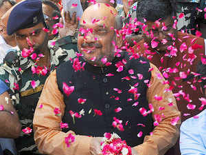 For Shah the results have come at an opportune time as he grows into his first full term as BJP chief. He can now form his new team before the National Executive meeting, to be held on June 11-12.