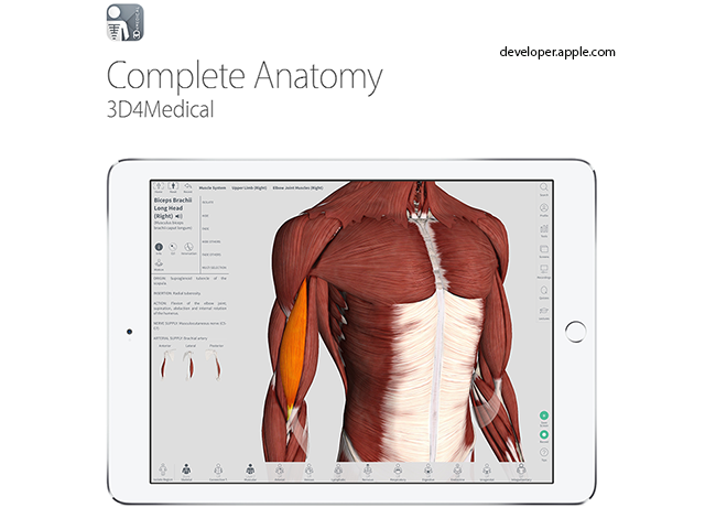 Apple Design Awards: Best iOS apps of 2016 - Complete Anatomy | The ...