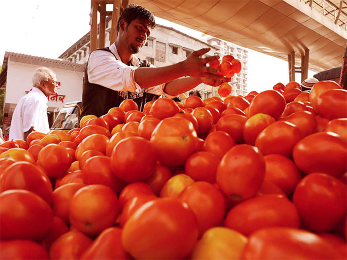 Avoid home-grown tomatoes this summer for better ones post monsoon