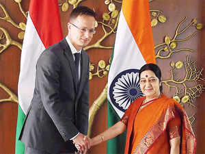 The two ministers also discussed the prospects of free trade agreement between India and European Union in the wake of Britain's decision to exit the EU.