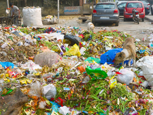 Technology needs to be adopted at various stages including mechanical sweeping of roads, monitoring the sanitation works and processing the waste once it is collected at the landfills, NMDC Commissioner said.