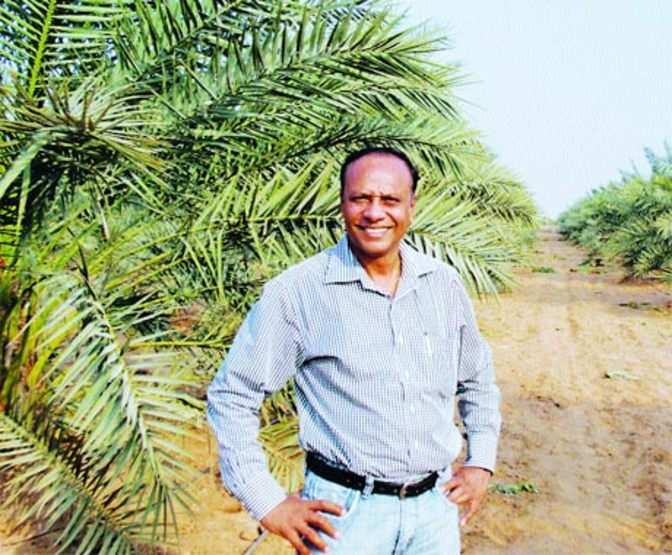 Chhabil Patel: The desert blooms from his efforts - The Economic Times