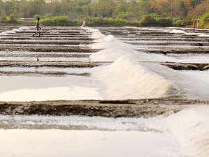 There is a total of 6 lakh acres of salt pan land in the country, half of which is salt producing.