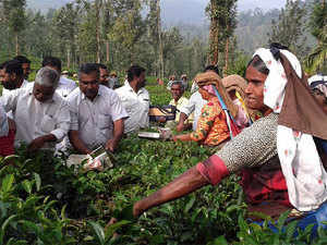 Banks have agreed to complete opening of accounts of tea garden workers within December 5, 2016 to ensure disbursal of wages through such accounts from December 15, 2016 onwards.