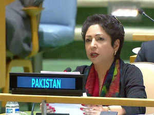 """""""But this Treaty is equally a good case study of what could go wrong if such agreements are not honoured or threatened by one of the state parties to be abrogated altogether. The international community must remain vigilant to any sign of unwillingness to maintain cooperation,"""" Lodhi said."""