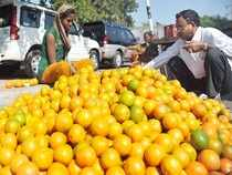 Orange growers have demanded that the government should make new currency available to the traders on an emergency basis and begin government procurement of the fruits.