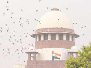 The bench adjourned the hearing for tomorrow and asked the advocates to come prepared on the point of transfer of cases and accused to Delhi from Siwan.