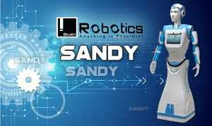 Named after a character in the animation film Croods, Sandy is a product of love and Katekari hopes that the world will fall in love with this humanoid.