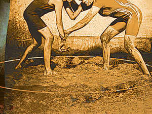 Now, all akharas in Haryana, most of which have sand beds for wrestlers, are set to get wrestling mats.