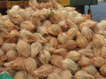 In the past few years, Indian coconut oil prices ruled higher than global rates.