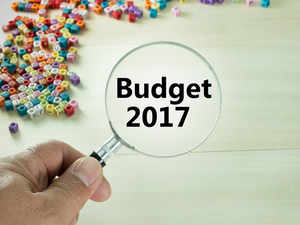 A budgetary stimulus and ongoing structural reforms will hopefully put the Indian economy in good position to achieve a higher growth rate this year.