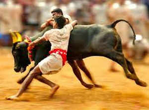 Jallikattu bill tabled, passed within minutes in TN assembly