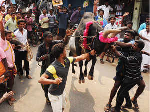 People scattered after the initial blows, many leaving the beach while many ran deeper toward the sea. In the assembly, Governor C Vidhya Sagar Rao was hailing the protesters for the peaceful nature of the protests.
