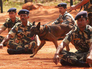 The 'Belgian Malinois' breed of dogs have been inducted in Indian security forces few years back. These dogs first shot to international fame after they assisted the elite US Navy SEALs in sniffing out Osama bin Laden from his safe haven in Pakistan in 2011 and were since then famously called as the 'Osama hunters'.