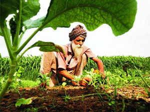 Farmers want to set up the micro irrigation systems, after the monsoon season is over.