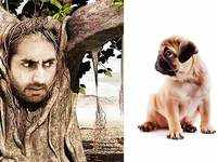 From the Vodafone pug to Idea's 'What an idea' ad, the best from the 2 telecom players