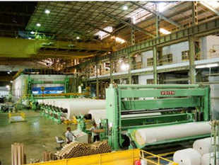Citing example of the 100 per cent disinvestment of Hindustan Newsprint Ltd (HNL), it said the decision was taken despite the dissent of the Department of Heavy Industries.
