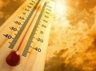 'India's temperature rose by 0.60 degree over last 110 years'
