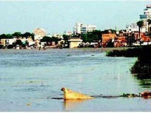 """The bench, however, refused to grant more time saying, """"Don't tell us all this. Don't discuss political issues with us as we are only concerned with pollution of River Ganga."""""""