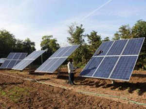 India has plans to add 5,000 MW of rooftop solar and 10,000 MW from large scale solar power projects in the current fiscal.