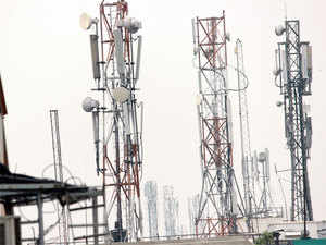 Activists have alleged that radiation from mushrooming mobile phone towers have caused sparrows, crows and bees to vanish.