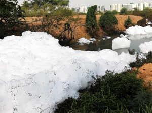 NGT orders shutdown of all industrial units around Bellandur lake