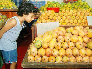 Mango Varieties Especially Baiganpally Alfonso And Kesar Are