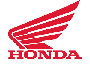 Honda will also ramp up its premium segment presence by bringing in Africa Twin, a 1000 cc sports bike, soon.
