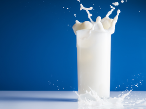 All major dairies had raised milk prices by Rs 2 a litre in February and March over concerns of low stocks and higher compensation to farmers.