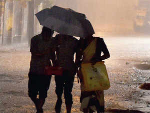 El Nino happens once every three to five years, begins in summer, between June and August, and lasts roughly a year.  [Representative image]