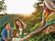 Planning a vacation? Discover nature at its best in Kerala