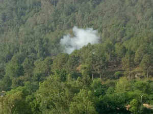 Smoke billows out from a forest after mortar shells were allegedly fired by Pakistani army in Naushera sector near the Line of Control (LoC) in Rajouri district. (File photo)