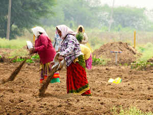 West Bengal: West Bengal government to utilise its unused land for