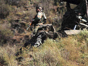 According to official figures, 228 ceasefire violations were reported along LoC and 221 violations along International Border in 2016.