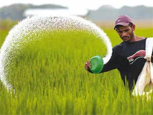 Taxes on fertilisers are set to shoot up to an average of 12% with the GST rollout from an average of 5% now.