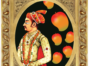 The Mughals encouraged both the planting of large orchards of mangoes and the sending of the best fruit as tribute to the court.
