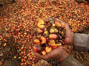 The share of palm oil is 64 per cent of the country's total vegetable oil imports.