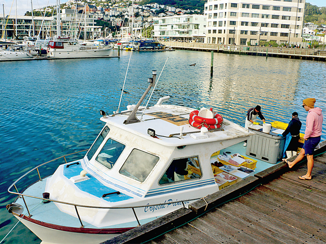 All very Wellington: New Zealand's capital has some quirky things to offer