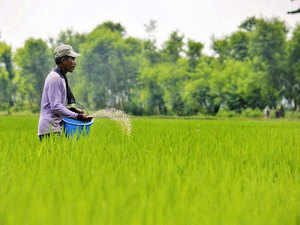 India is the fourth-largest global producer of agrochemicals after the US, Japan and China.
